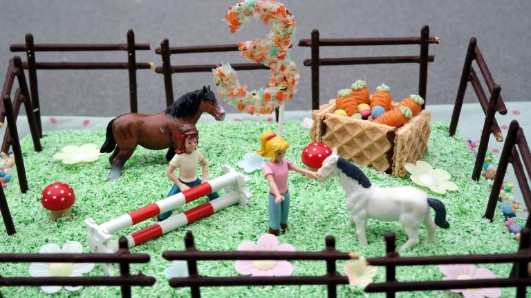 Pferdetorte mit Bibi und Tina